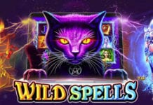 wild-spell