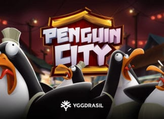 penguin-city