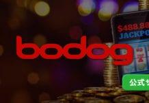 ボードッグカジノトップバナー