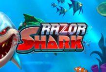razor sharkスロット